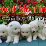 Good Morning Baby Pics Wallpaper Free