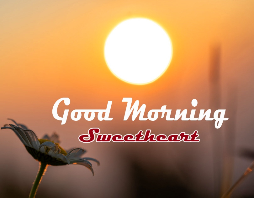 Good Morning Images Photo Download 7