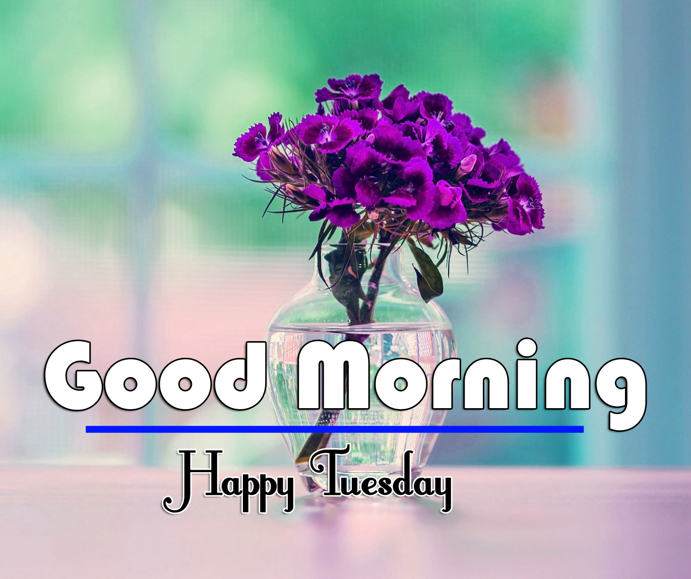 Good Morning Tuesday Images 6