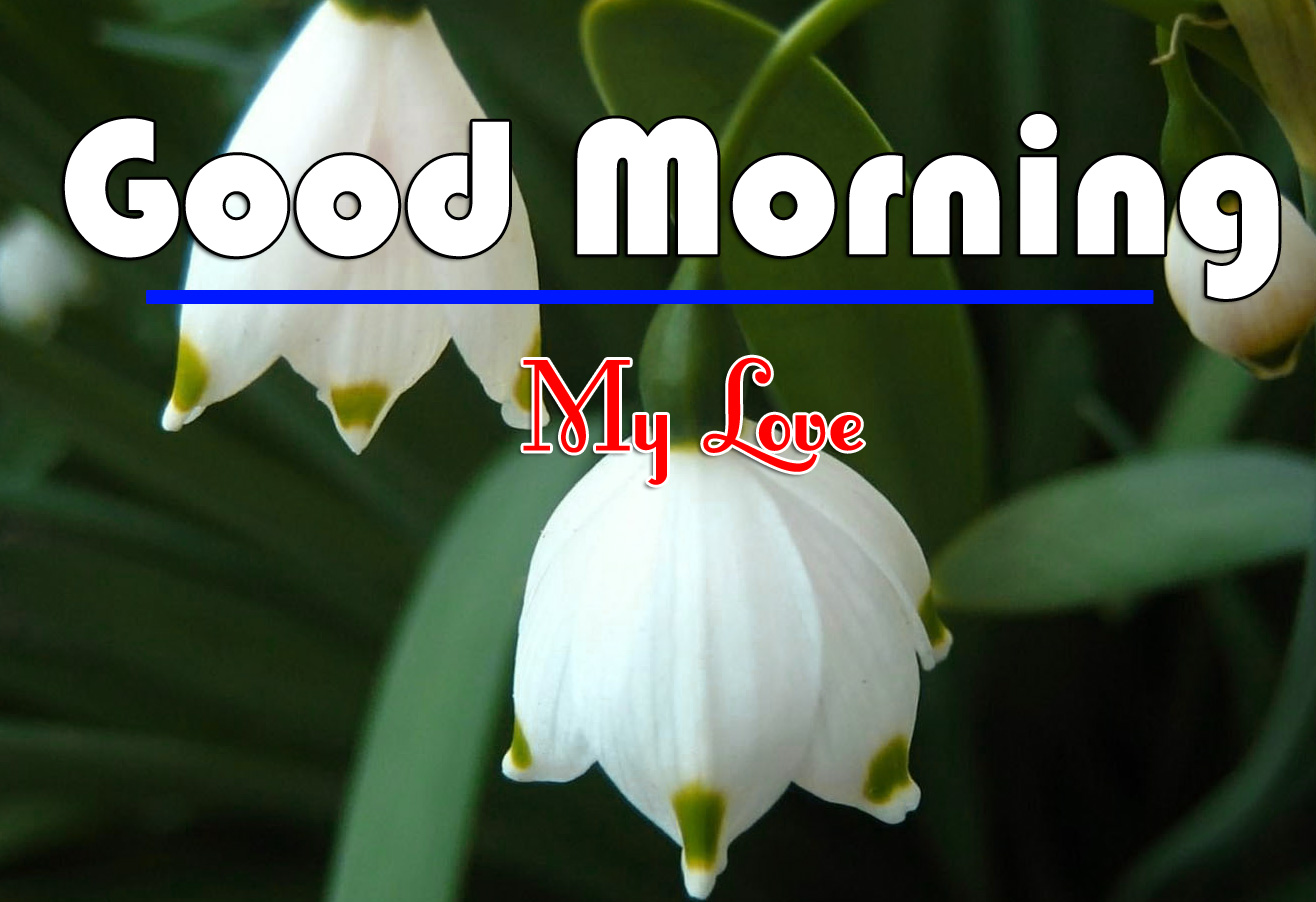 Good Morning Wishes Images Download 1
