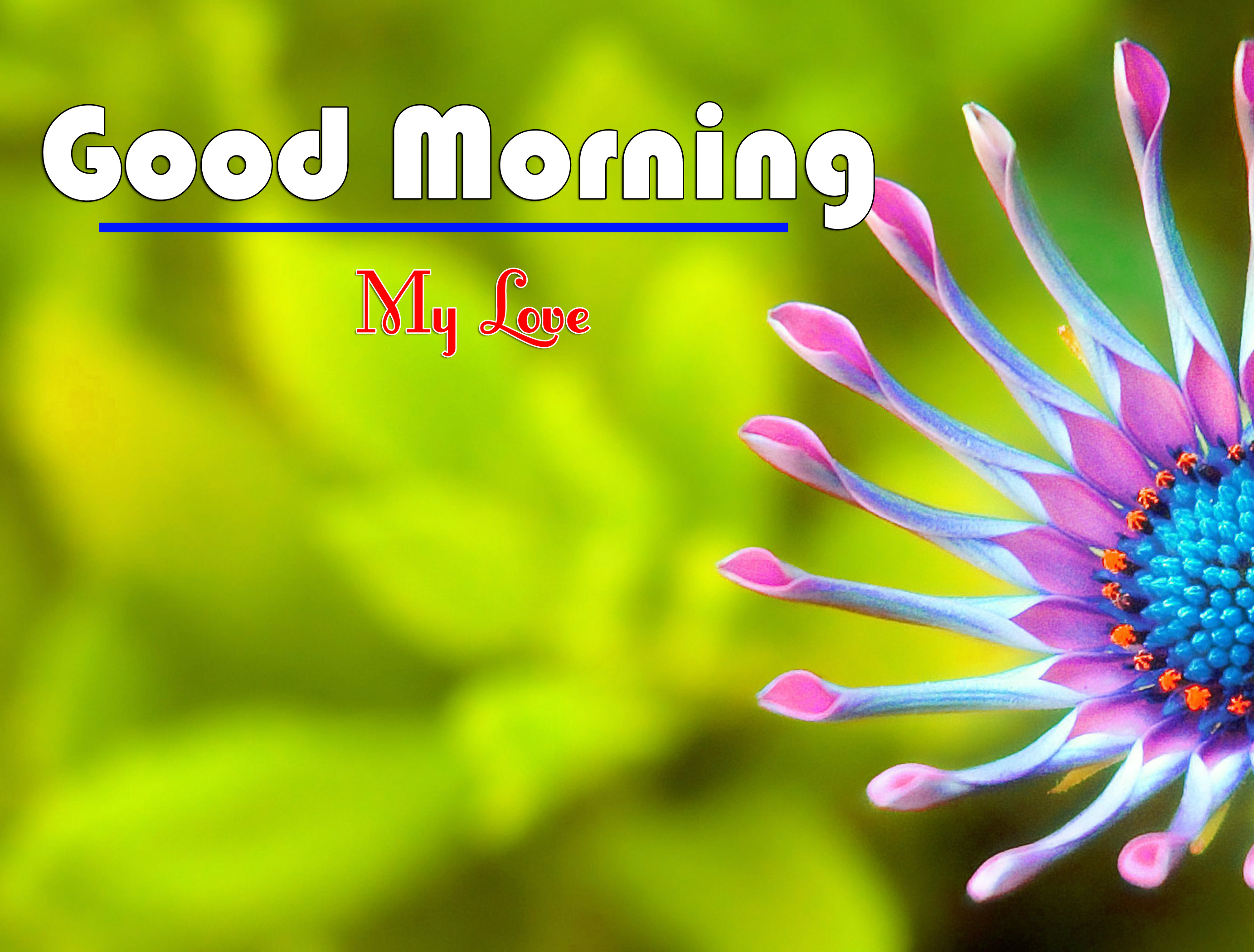 Good Morning Wishes Images Download 3