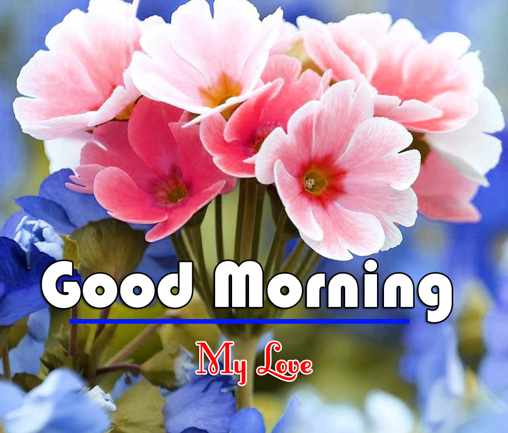 Good Morning Wishes Images Download 4