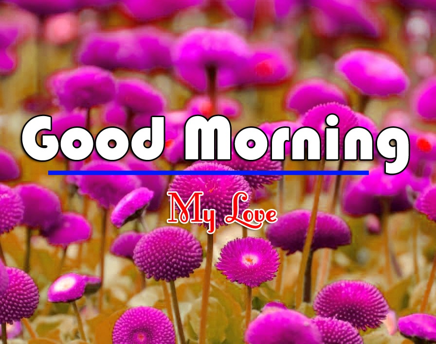Good Morning Wishes Images Download 6