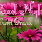 Good Night Wishes Images 33