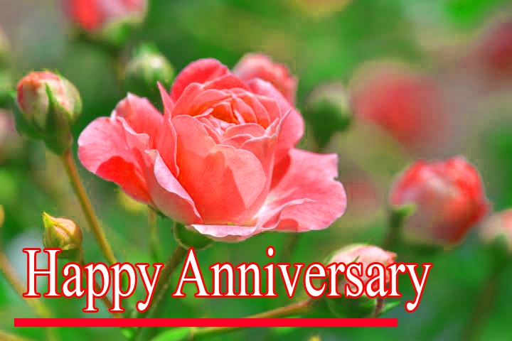 Happy Anniversary Pics Download