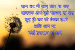 Hindi Shayari Images 2 1
