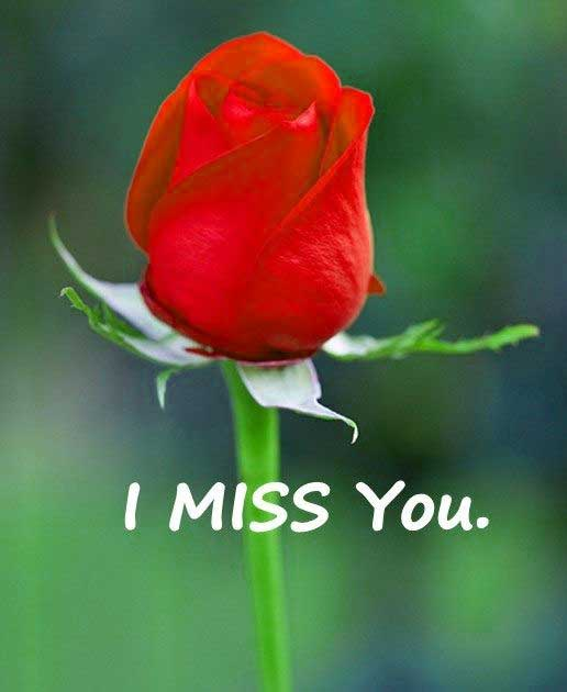 I miss you Images 2