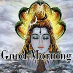 Lord Shiva Good Morning Images 1