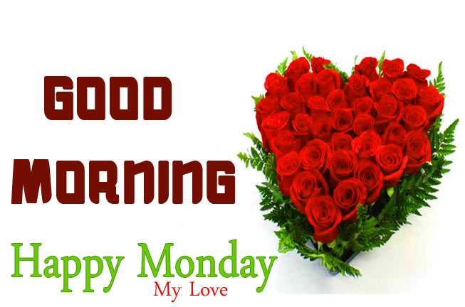 Monday Good Morning Wisehs Images With Rose