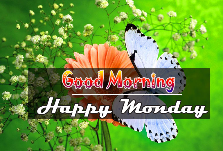 Monday Good Morning Wishes Pics