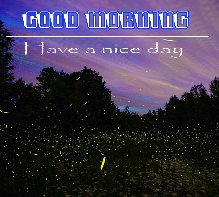 Nature Good morning Images