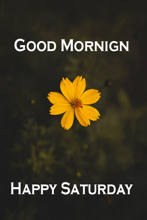 Saturday Good Morning Images Pics Download Free