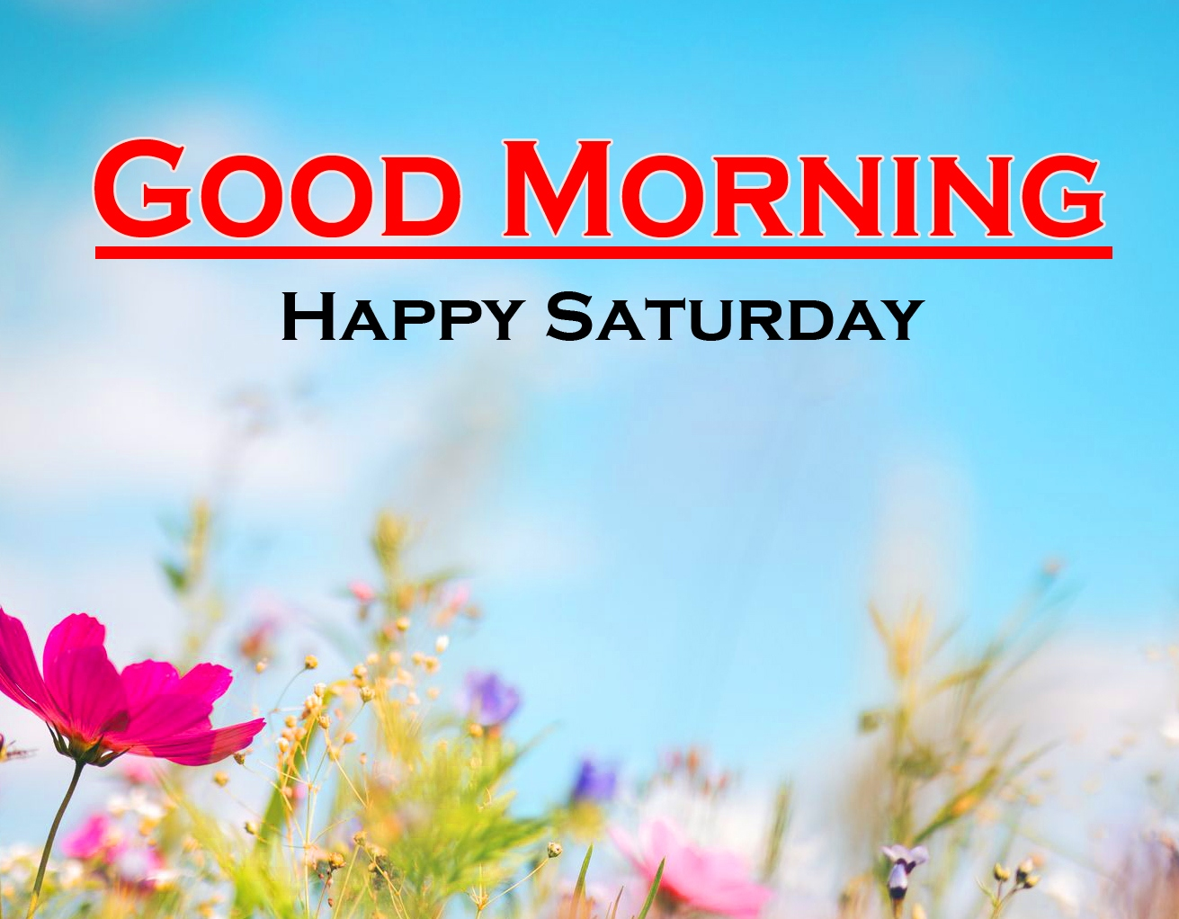 Saturday Good Morning Images Wallpaper Download