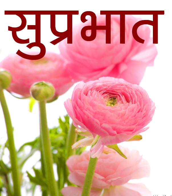 Hindi Good Morning Images