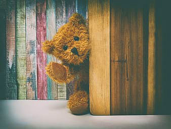 Teddy Bear Images Pics photo Download Free Latest