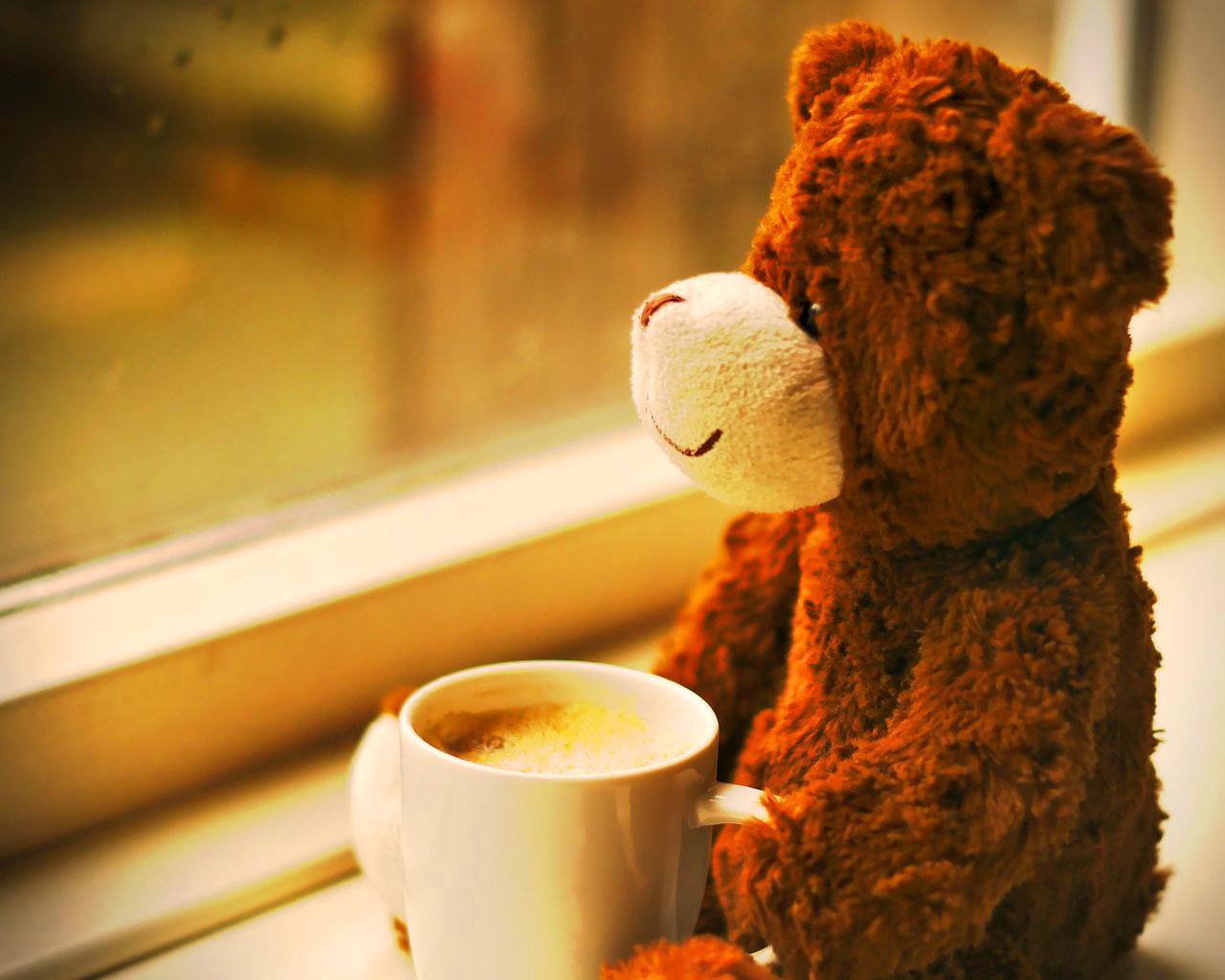 Teaddy bear Photo 20
