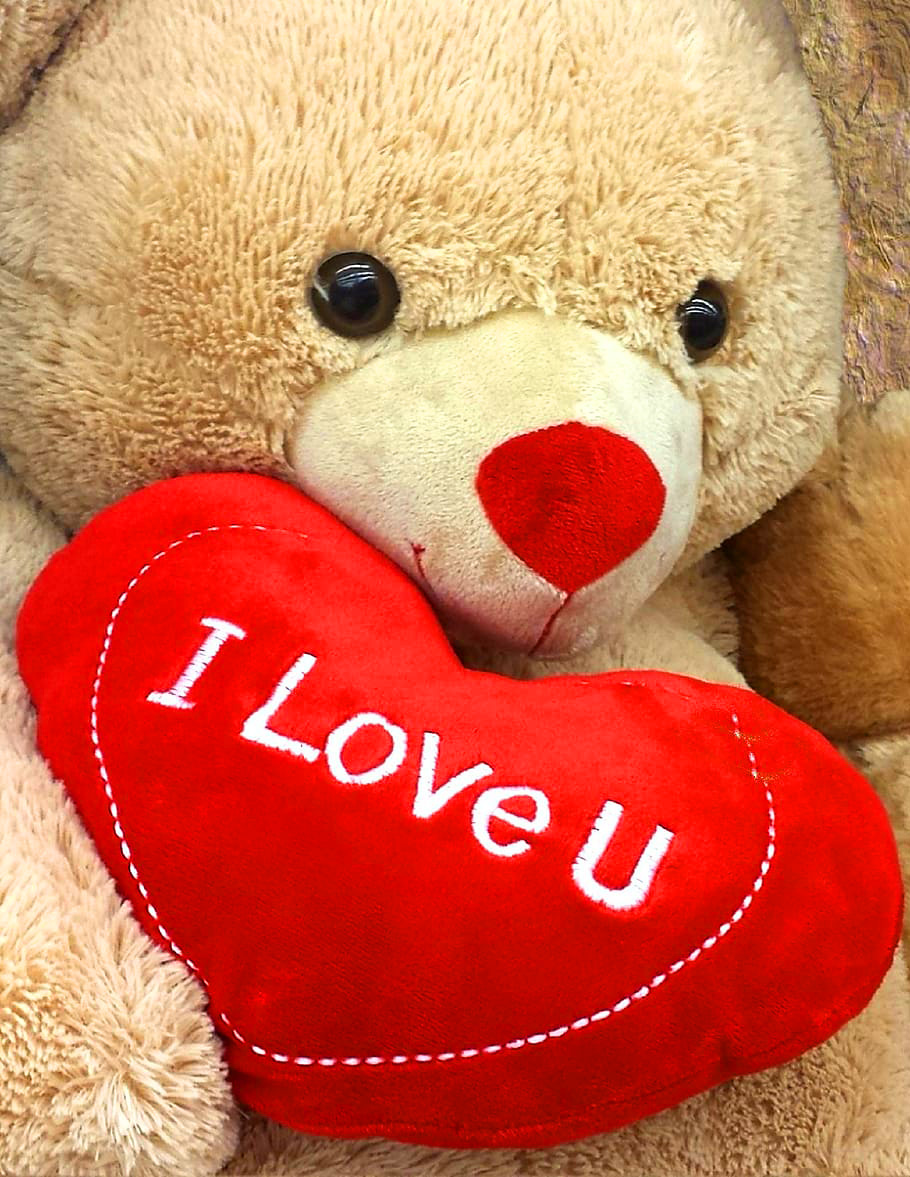 Teddy Bear Images Wallpaper Free Download