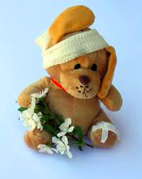 Best free Teddy Bear Images Pics Download