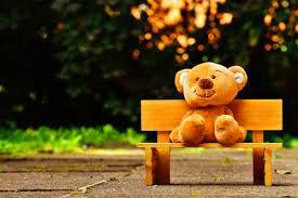 Teaddy bear Photo 28