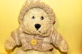 Teaddy bear Photo 32