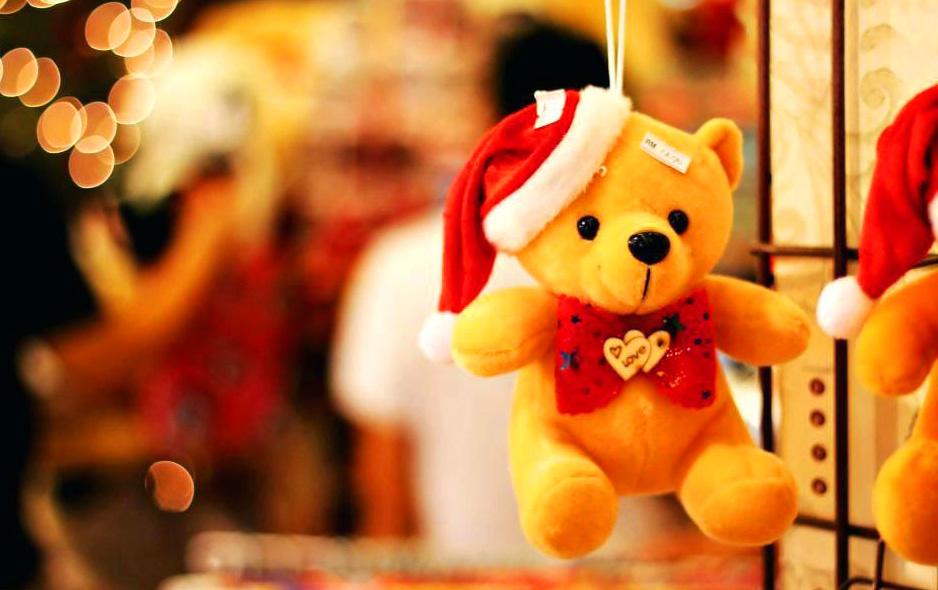 Teaddy bear Photo 5