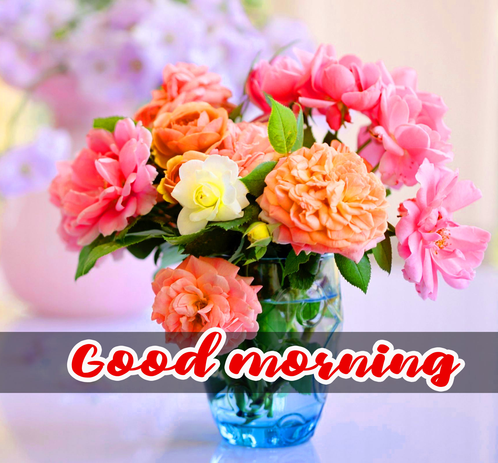 Flower good morning Pics Wallpaper Free