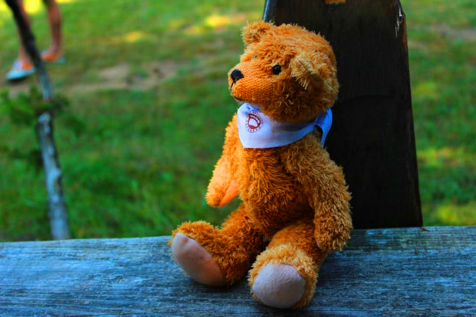 teddy bear Images 11