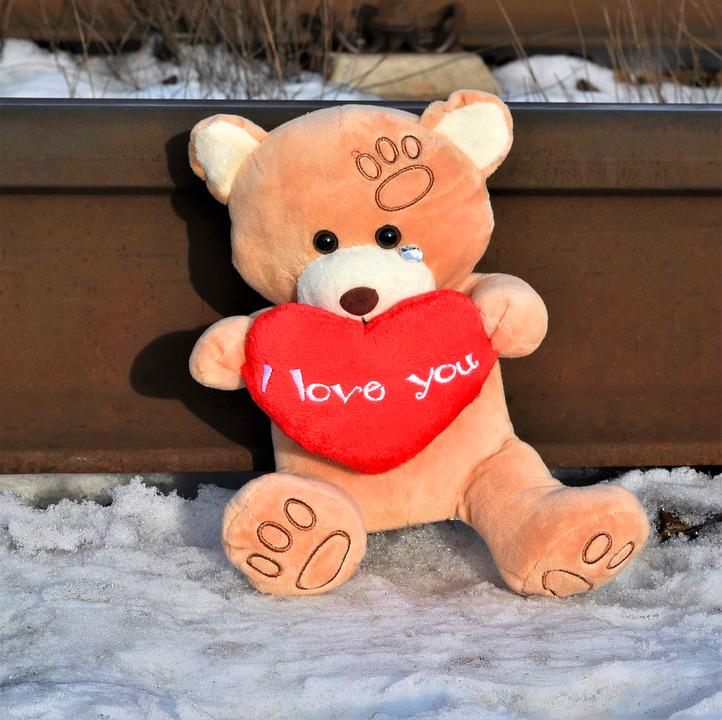 teddy bear Images 14