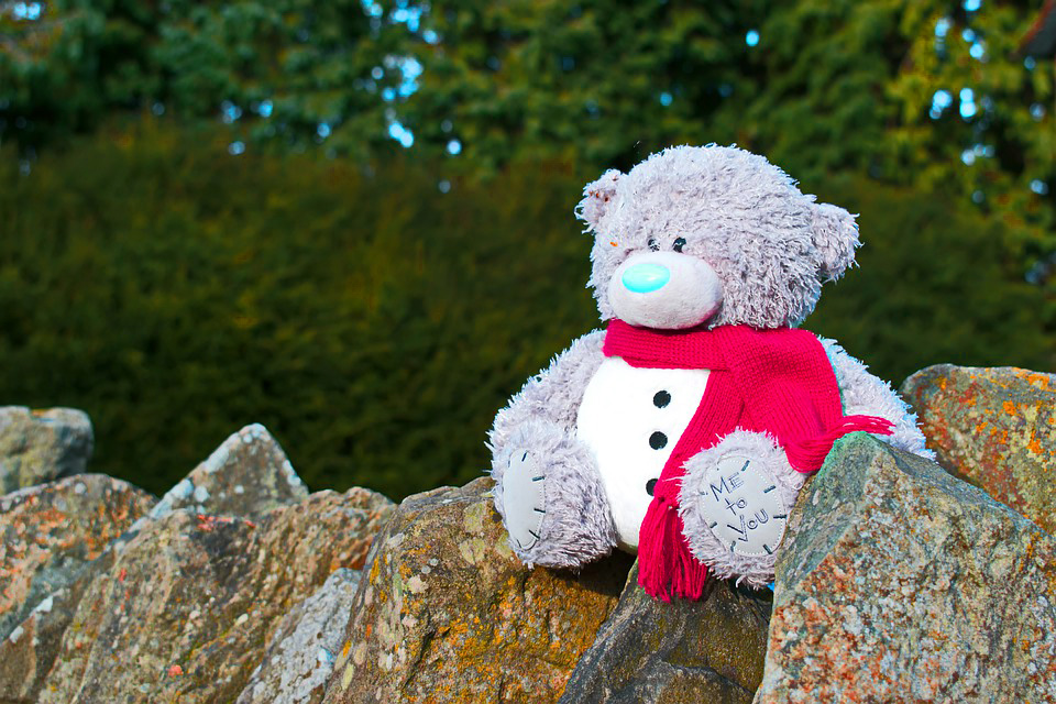 teddy bear Images photo Wallpaper Free Download