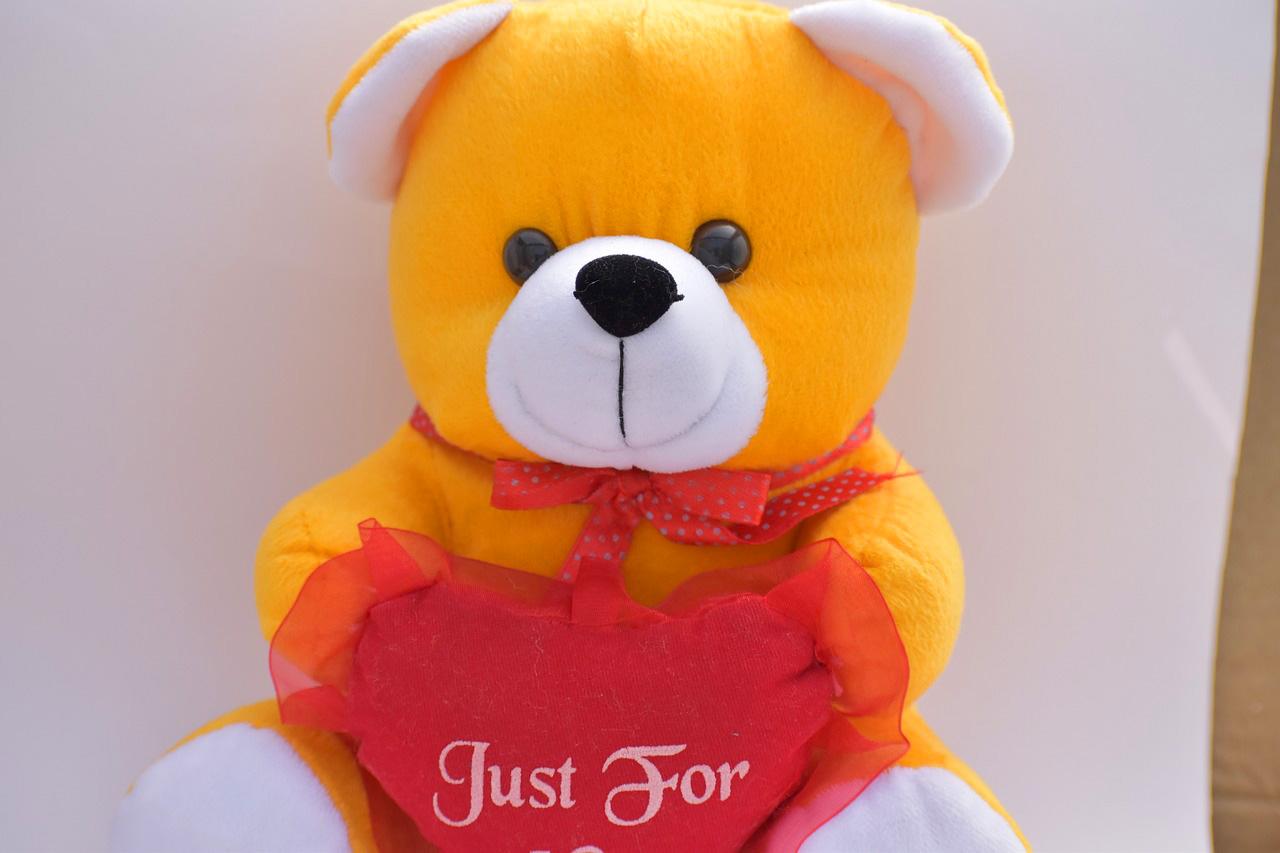 teddy bear Images 17