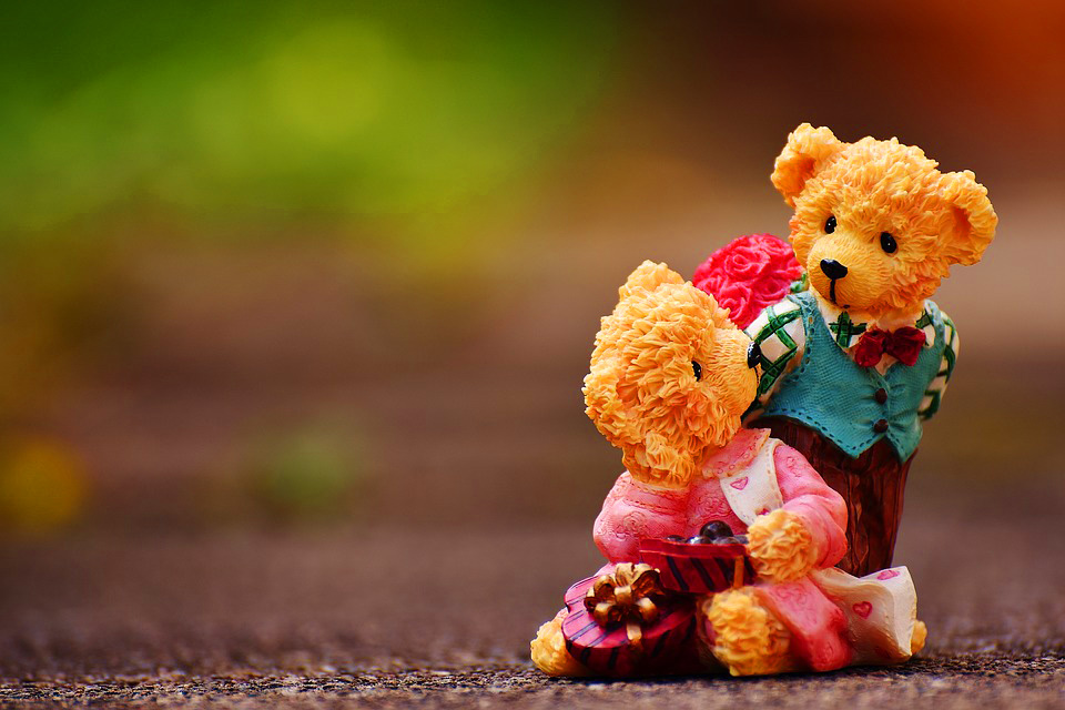 teddy bear Images photo pics Free Download