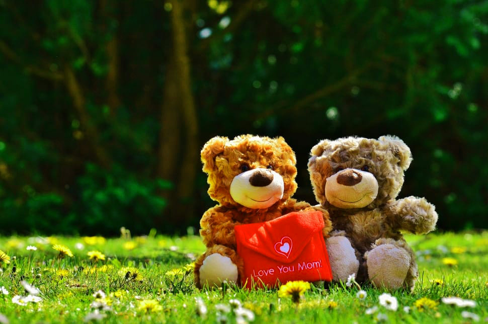 Teddy Bear Images Pics free Download