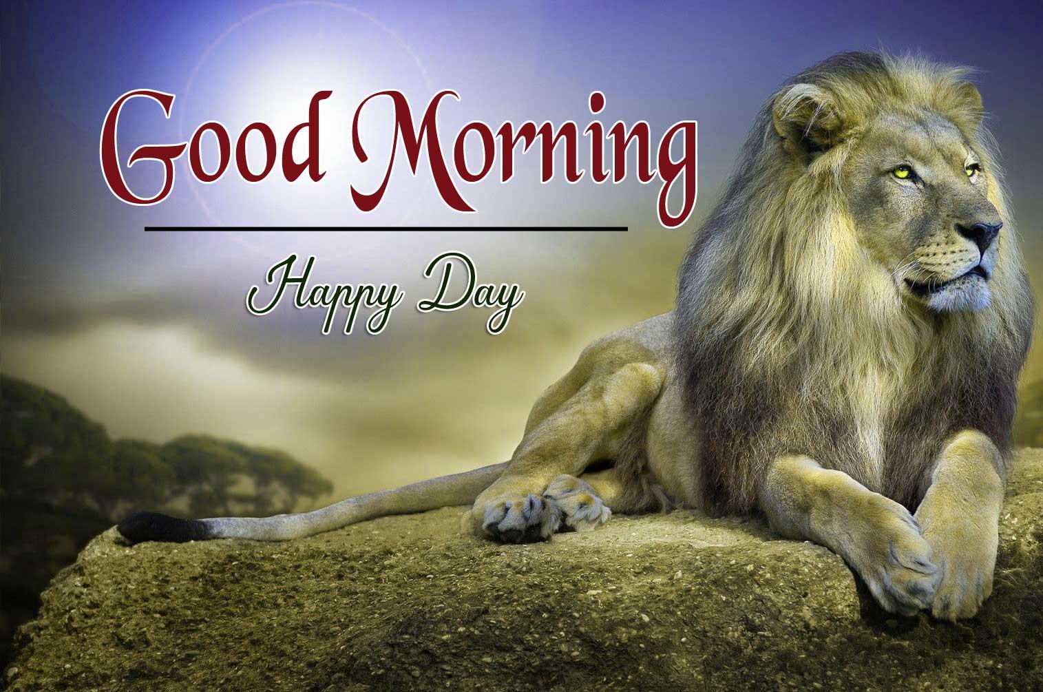 Animal Good Morning Image 1