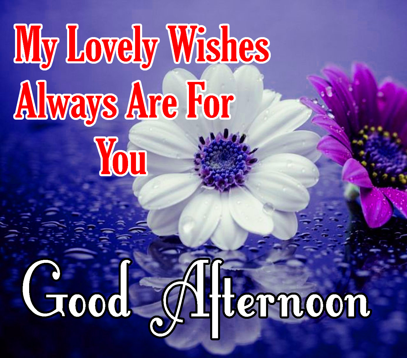 Beautiful Good Afternoon Images Wallpaper Free Download