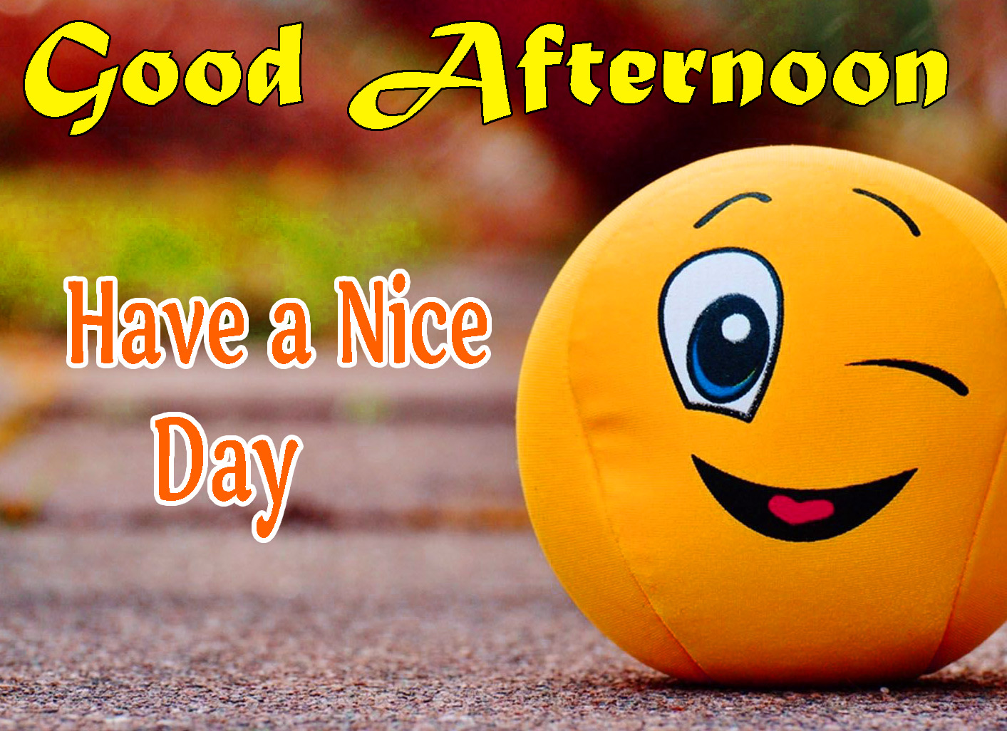 Free Beautiful Good Afternoon Images Pics Download