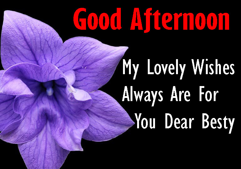 Good Afternoon 4