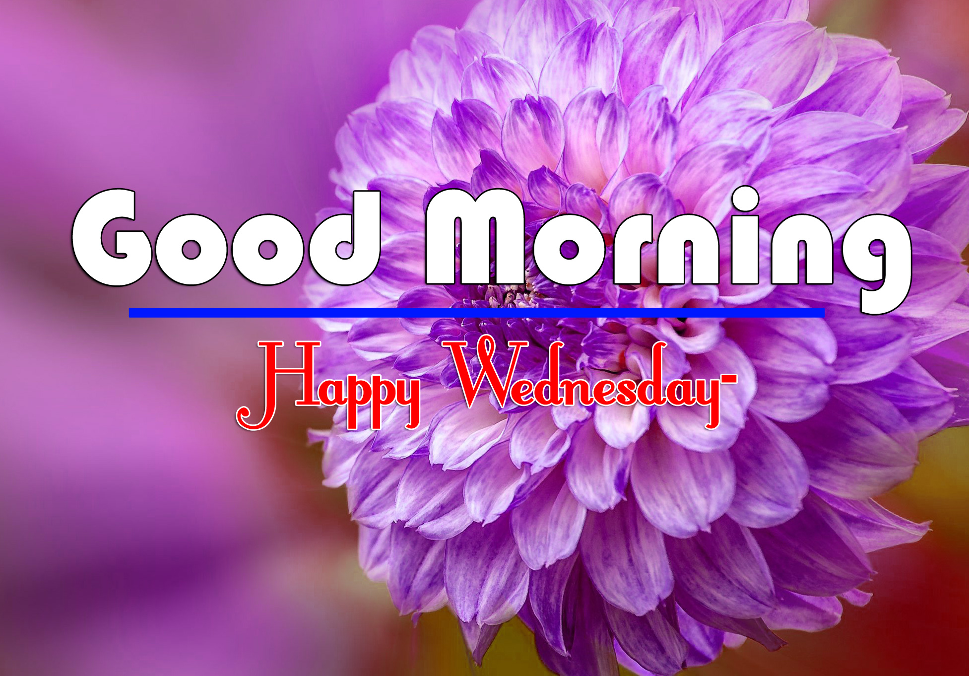 Good Morning Wednesday Images 1