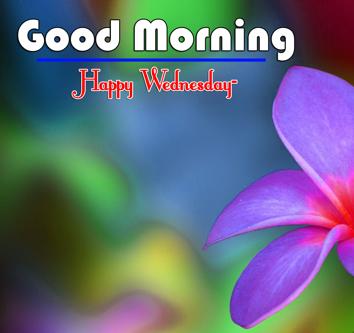 Good Morning Wednesday Images 2