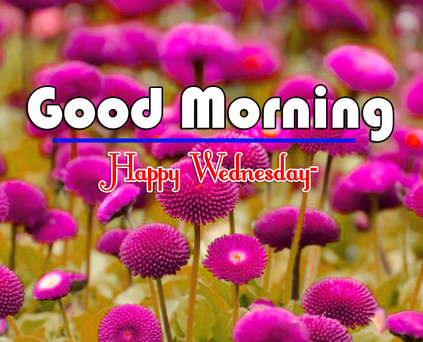 Good Morning Wednesday Images 4