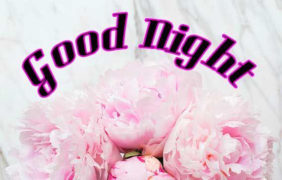 Good Night Wallpaper With Flower