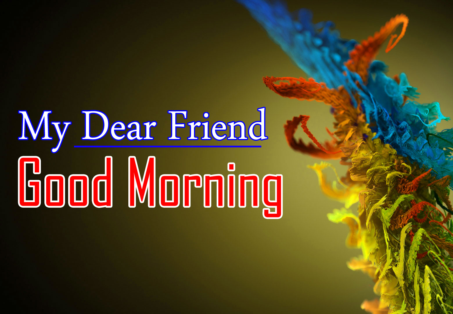 New Free 1080p Good morning HD Pic Photo Download