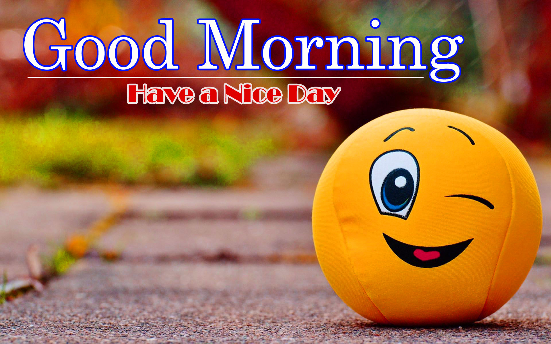 Free 1080p Good morning HD Wallpaper Download