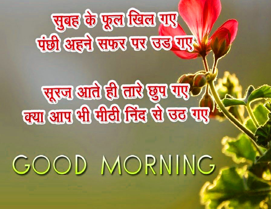 Hindi Quotes Good Morning Images With Flower
