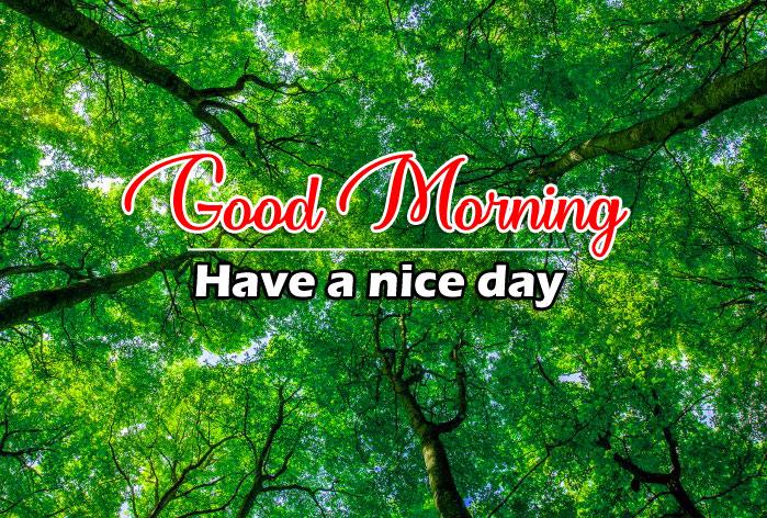 Beautiful Good Morning Pics Wallpaper