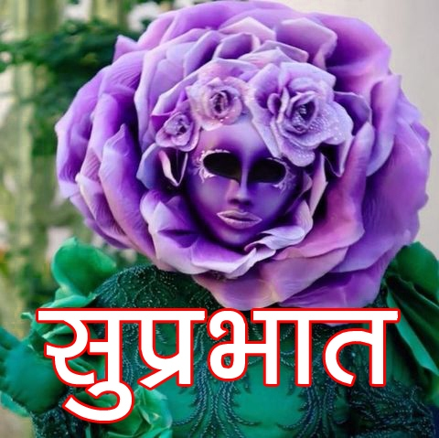 Latest Free Beautiful Flower Suprabhat Images Pics Download