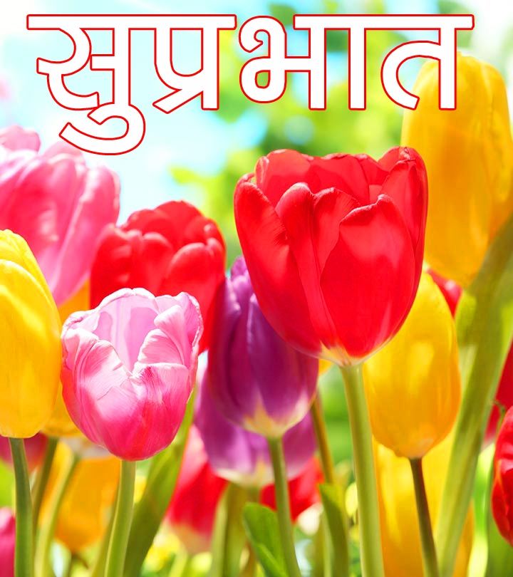 Beautiful Free Flower Suprabhat Images Download