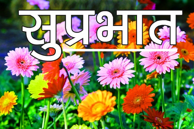 New Latest Free Beautiful Flower Suprabhat Images Pics Download