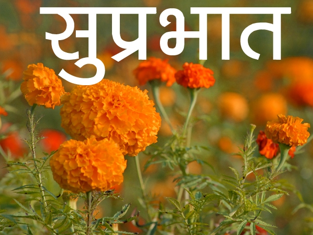 Flower Suprabhat Images 27