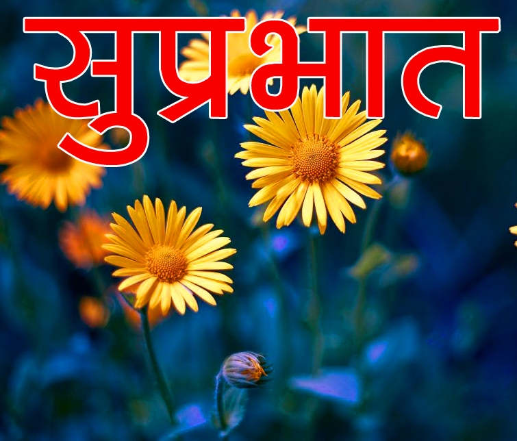 Flower Suprabhat Images 37