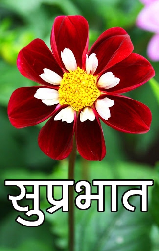 Flower Suprabhat Images 39
